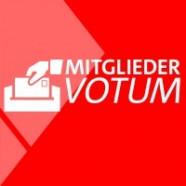 SPD Mitgliederbefragung